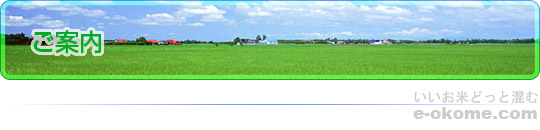 http://www.e-okome.com/image/mainimage_c01_001.jpg